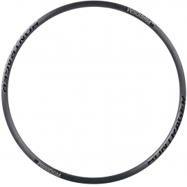 Paradigm Elite Disc Rim