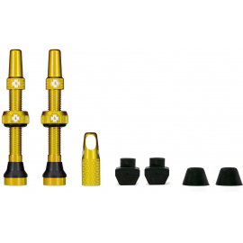 Tubeless Valve Kit 44mm/Gold